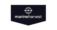 marineharvest3